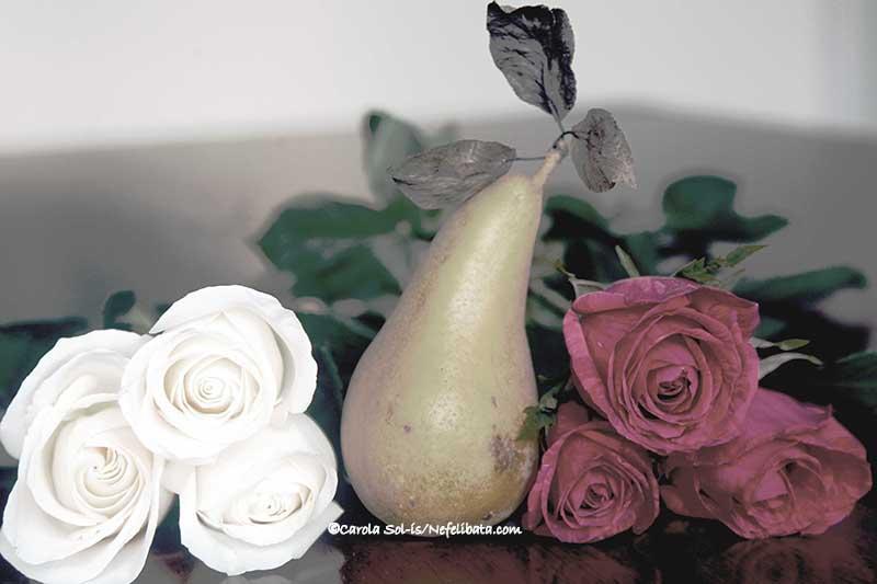 Still life on roses version 1